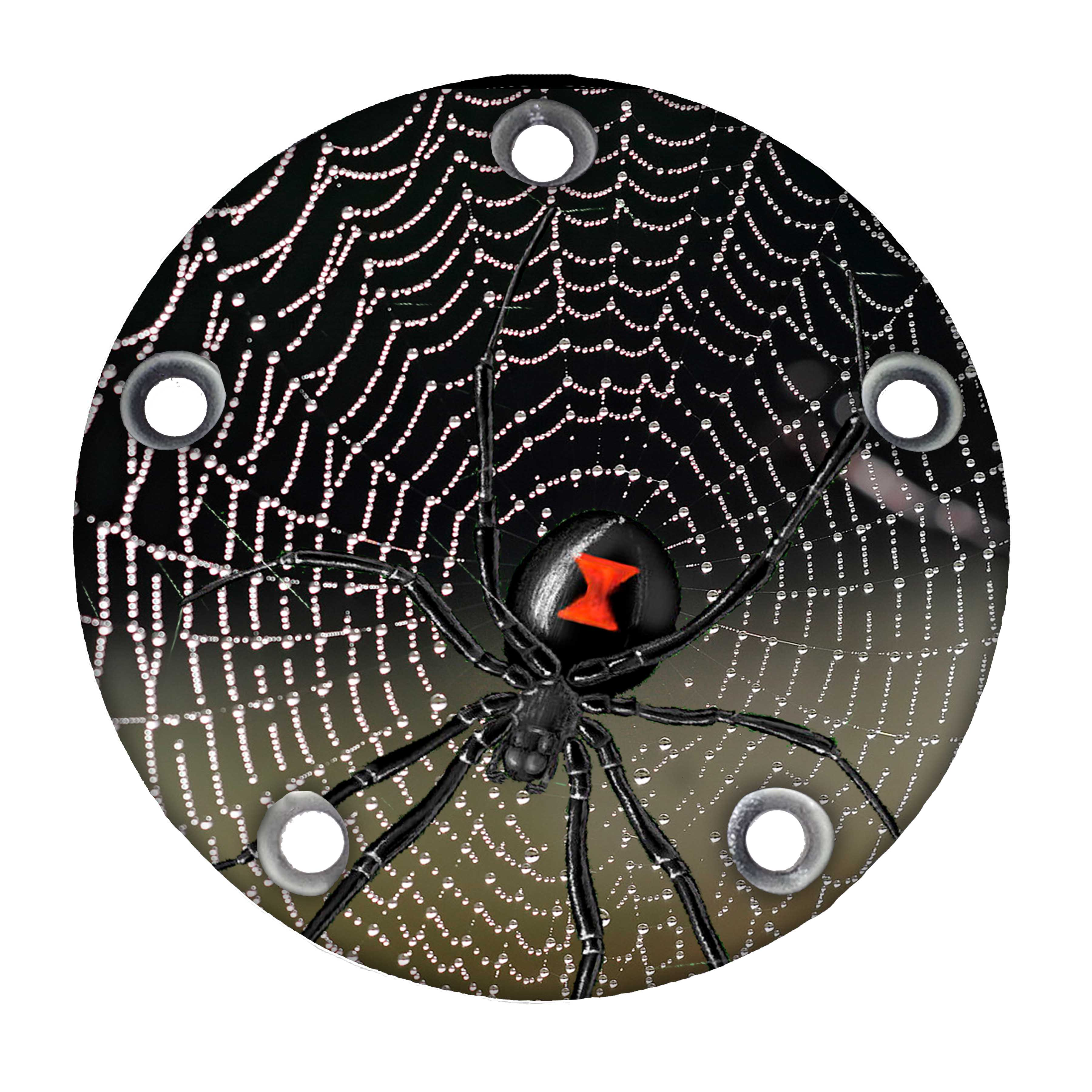 Harley Davidson Custom Timing Cover - Spider on web w/ dew