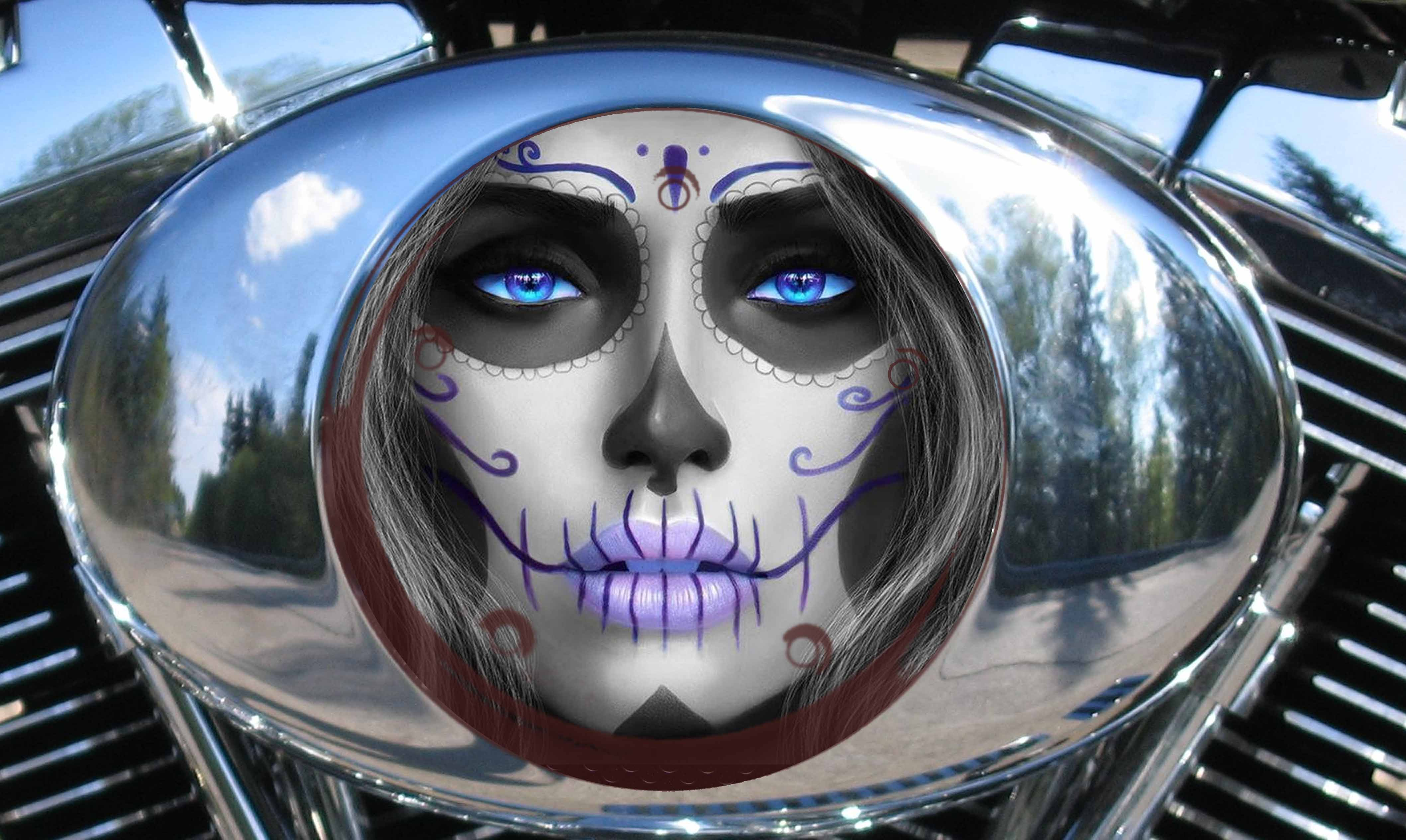 Harley Air Cleaner Cover - Candy/ Sugar skull